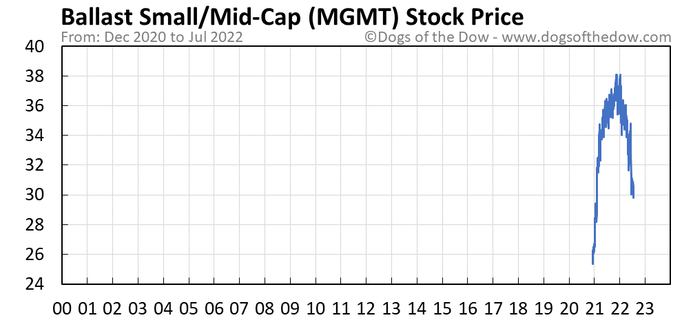 MGMT stock price chart